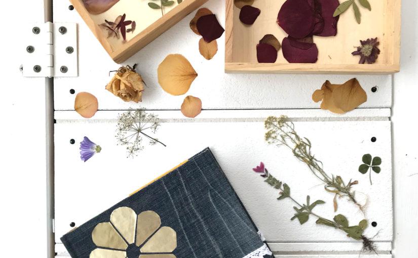 Altes Buch als Blumen- und Blütenpresse
